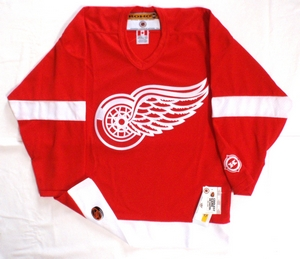 Detroit Red Wings semi-pro youth hockey jersey